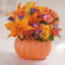 -Pretty-Pumpkin-Arranegment--$49.95