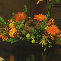 -Harvest Garden  $44.95