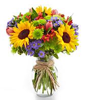 728 Wonderful Wildflowers 3995