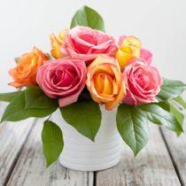 730 rose garden 44.95