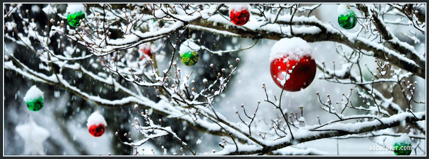 7076-ornaments-on-a-tree