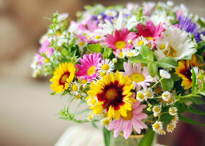 ATOA-Everyday-flowers